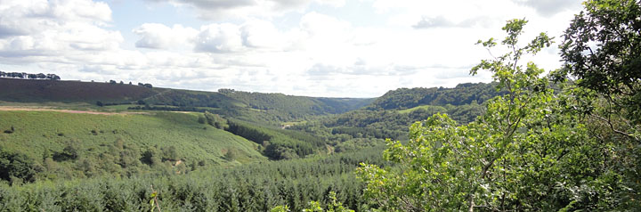 Photo of Newtondale near Pickering North Yorkshire