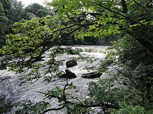 Photo of Aysgarth Falls in Wensleydale North Yorkshire