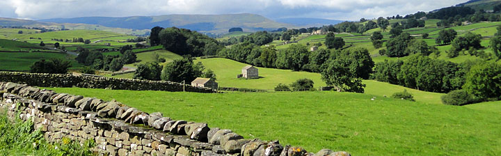 Photo of Wensleydale from the A684 Hawes to Leyburn Road
