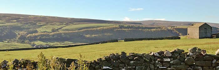 View from Tetheran Cottage - Marrick holiday cottage in Swaledale North Yorkshire