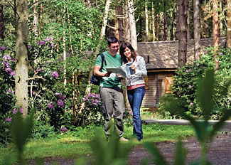 Walks and trails at Griffon Forest holiday lodges in Flaxton near York