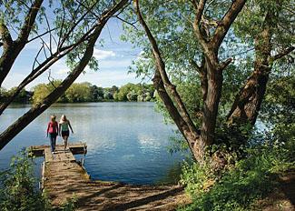 Park setting at York Lakeside Lodges
