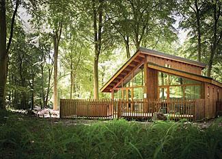 Setting of Golden Oak Hideaway Lodge - Cropton Lodges - Self Catering Accommodation near Pickering