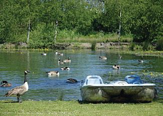 Natural fishing lake at Pickering Lodges Ryedale North Yorkshire