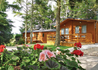 Lodge setting at Allerton Holiday Park near Knaresborough North Yorkshire