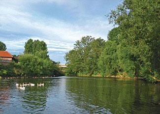 River Derwent near Weir Holiday Park near York - Self Catering Accommodation in Stamford Bridge