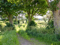 Surrounding area at Scalby Lodge Farm - Holiday Cottages in Scalby near Scarborough