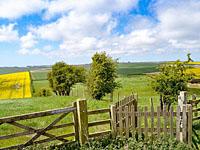 Stunning views at Danebury Manor Farm Holiday Cottages near Flixton North Yorkshire