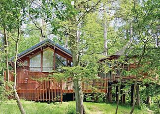 Golden Oak Treehouse Lodge ( Ref LP5574 ) at Keldy forest lodges near Cropton