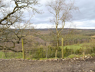 Photo of Surprise View Cropton near Sycamore Farm Lodge Accommodation - Holiday Lodge North Yorks