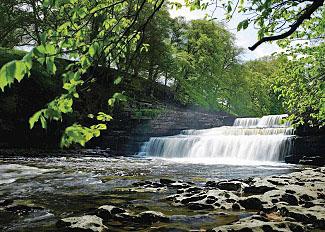 Aysgarth Falls North Yorkshire near Aysgarth Lodges Bishopdale Beck